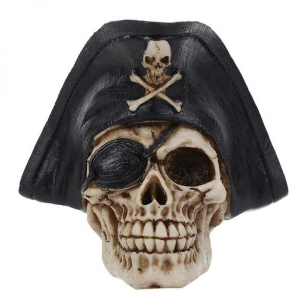 head of dead pirate skull kingdom